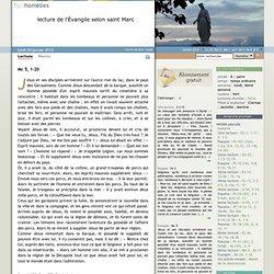 """homelies.fr : """"Je m'appelle Légion, car nous sommes beaucoup"""""""