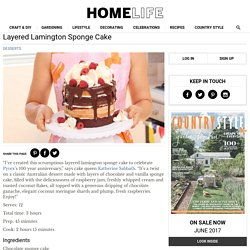 Homelife - Layered Lamington Sponge Cake