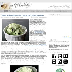 100% Homemade Mint Chocolate Chip Ice Cream