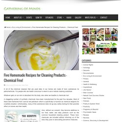 Five Homemade Recipes for Cleaning Products – Chemical Free!