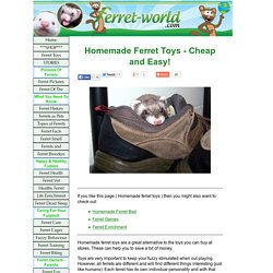 Homemade Ferret Toys, ferret toys, ferrets toys and cheap ferret toys