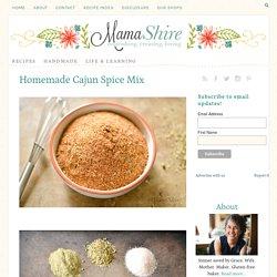 Homemade Cajun Spice Mix - MamaShireMamaShire