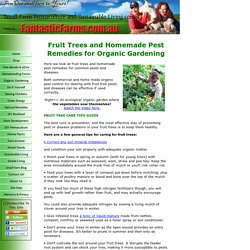 Fruit Trees and Homemade Pest Remedies for Organic Gardening.