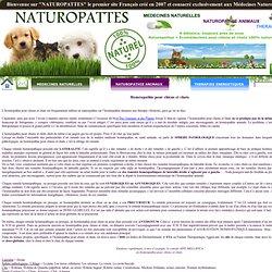Homeopathie pour chiens et chats