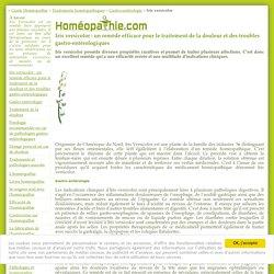 Homéopathie Iris versicolor