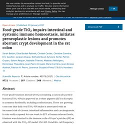 Food-grade TiO 2 impairs intestinal and systemic immune homeostasis, initiates preneoplastic lesions and promotes aberrant crypt development in the rat colon