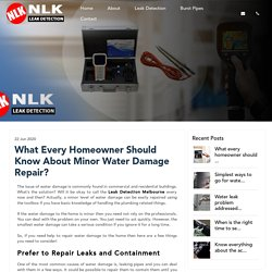 What Every Homeowner Should Know About Minor Water Damage Repair?