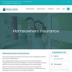 Blue Lion Insurance Advisors LLC