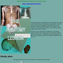 Homepage for the Anatomy Lesson
