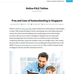 Pros and Cons of homeschooling in Singapore – Online PSLE Tuition