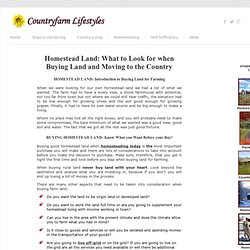 Homestead Land: What To Look For When Buying Land