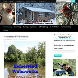 Homesteading Archives - Homestead Honey