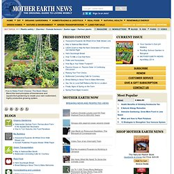 Organic Gardening, Modern Homesteading, Renewable Energy, Green Homes, DIY Projects – MOTHER EARTH NEWS