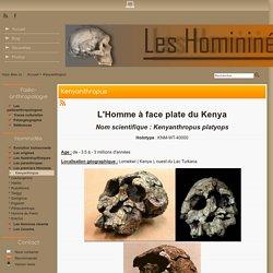 Kenyanthropus