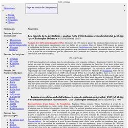 Séquençage de l'ADN mitochondrial (ADNmt) d'un fossile d'un homme Cro-Magnon