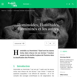 Hominoïdes, Hominidés, Homininés et les autres