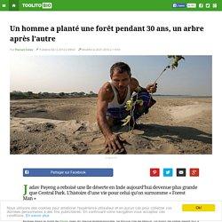 Un homme a planté une forêt pendant 30 ans, un arbre après l'autre
