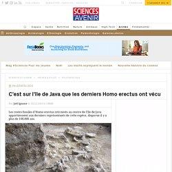 L'Homo erectus a fini sa vie à Java