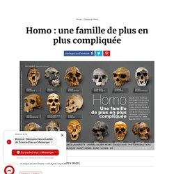 Homo : une famille de plus en plus compliquée...