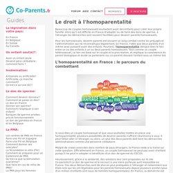 Homoparentalité en France, devenir parents et être homosexuel