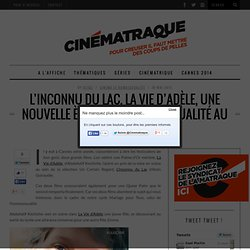 L'Inconnu du Lac, La Vie d'Adèle, l'homosexualité au cinéma