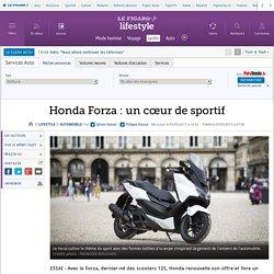 Honda Forza : un cœur de sportif