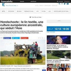 Hondschoote : le lin textile, une culture européenne ancestrale, qui séduit l'Asie