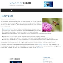 Honey Bees in Quran