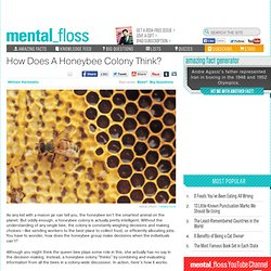 How Does A Honeybee Colony Think?