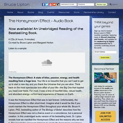 The Honeymoon Effect - Audio Book