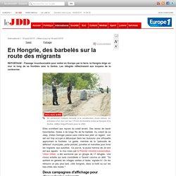 En Hongrie, des barbelés sur la route des migrants