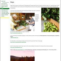 Hops - www.anjalifarm.com