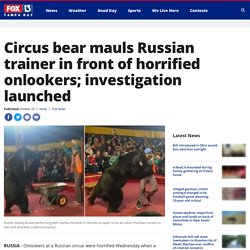 Circus bear mauls Russian trainer in front of horrified onlookers; investigation launched