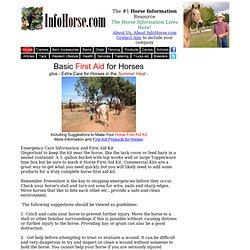 Horse First Aid, Equine First Aid