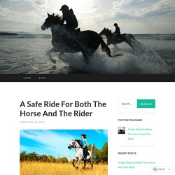 A Safe Ride For Both The Horse And The Rider