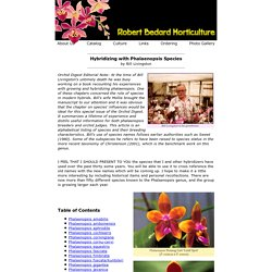 Robert Bedard Horticulture : Hybridizing with Phalaenopsis Species : Table of Contents