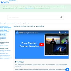 Host and co-host controls in a meeting