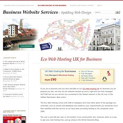 Eco Web Hosting UK for Business