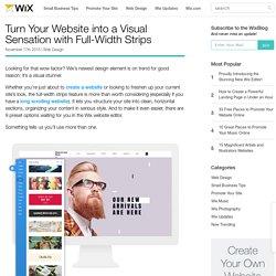 Wix Feature: Full-Width Strips_für bestimmte Zwecke