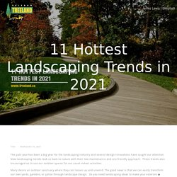 11 Hottest Landscaping Trends in 2021