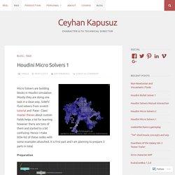 Houdini Micro Solvers 1 – Ceyhan Kapusuz
