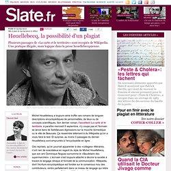 Houellebecq, la possibilité d'un plagiat