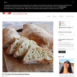A 2 1/2 Hours No Knead Bread Recipe | Italian Chips