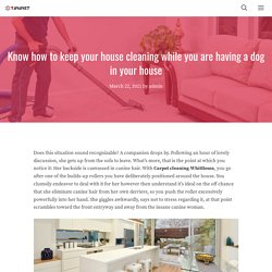 Know how to keep your house cleaning while you are having a dog in your house