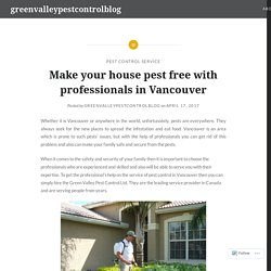 Make your house pest free with professionals in Vancouver – greenvalleypestcontrolblog