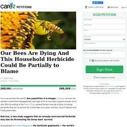 texte de la pétition: Our Bees Are Dying And This Household Herbicide Could Be Partially to Blame