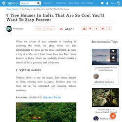 7 Tree Houses In India That Are So Cool You'll Want To Stay Forever by Gunjan