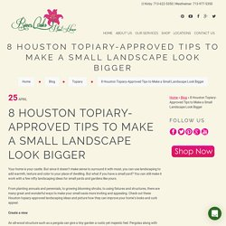 8 Houston Topiary-Approved Tips to Make a Small Landscape Look Bigger