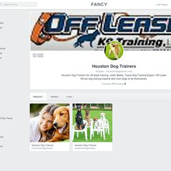 Houston Dog Trainers profile on fancy