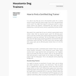 How to Find a Certified Dog Trainer